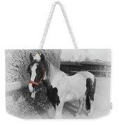 Gypsy Horse Weekender Tote Bag