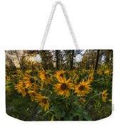 Hamblen Park Sunshine Weekender Tote Bag