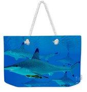 Hammerhead Sharks Weekender Tote Bag