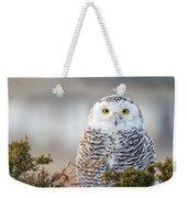 Hampton Beach Nh Snowy Owl Weekender Tote Bag