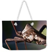 Handsome Bug Weekender Tote Bag