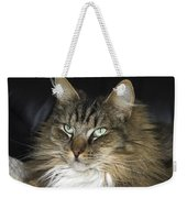 Handsome Cat Weekender Tote Bag