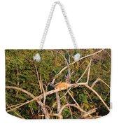Hanging Iguana Weekender Tote Bag