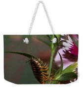 Hanging On Hanging In There Weekender Tote Bag