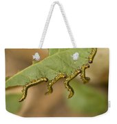 Hanging There Weekender Tote Bag