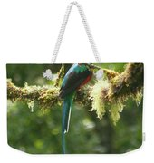 Hanging With The Moss Weekender Tote Bag