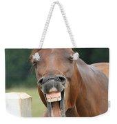 Happy Birthday Smiling Horse Weekender Tote Bag