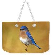 Happy Blue Bird Weekender Tote Bag