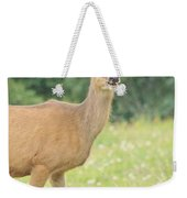 Happy Deer Weekender Tote Bag