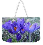 Harbinger Of Spring Weekender Tote Bag