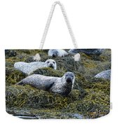 Harbor Seal Colony At Loch Dunvegan Weekender Tote Bag
