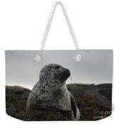Harbor Seal In Stormy Weather Weekender Tote Bag