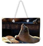 Harbor Seal In The Sun Weekender Tote Bag