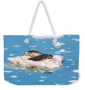 Harbor Seals On Clouds Of Ice Weekender Tote Bag