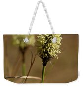 Hare's-tail Cottongrass 1 Weekender Tote Bag