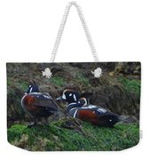 Harlequin Ducks  Weekender Tote Bag