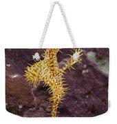 Harlequin Ghost Pipefish - Solenostomus Paradoxus Weekender Tote Bag