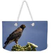 Harris Hawk Atop A Saguaro  Weekender Tote Bag