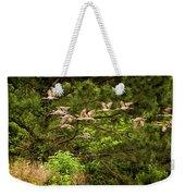 Harris Neck Ibis In Flight Weekender Tote Bag