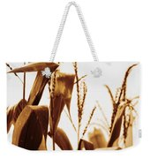 Harvest Corn Stalks - Gold Weekender Tote Bag