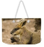Having A Snack Weekender Tote Bag by Mike  Dawson
