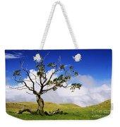 Hawaii Koa Tree Weekender Tote Bag