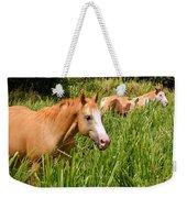 Hawaiian Horses In Sugar Cane Weekender Tote Bag