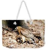 Hawk And Gecko Weekender Tote Bag by George Randy Bass