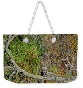 Hawk In Hiding Weekender Tote Bag