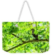 Hawk In Sycamore Weekender Tote Bag
