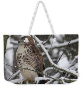 Hawk In Winter Weekender Tote Bag