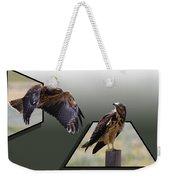 Hawks Weekender Tote Bag by Shane Bechler