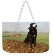 Hay There Black Dog Weekender Tote Bag