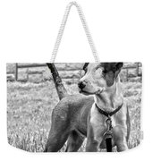 Hdr America Breed Weekender Tote Bag