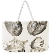 Heart, Anatomical Illustration, 1814 Weekender Tote Bag