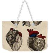 Heart, Anatomical Illustration, 1822 Weekender Tote Bag