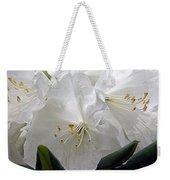 Heavenly Glimpse Weekender Tote Bag