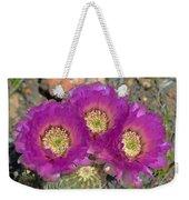 Hedgehog Cactus Triplets Weekender Tote Bag