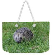 Hedgehog  Weekender Tote Bag