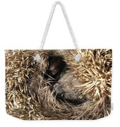 Hedgehog Curled Up Weekender Tote Bag