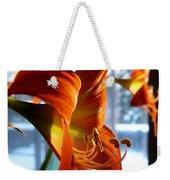 Heirloom Amaryllis  Weekender Tote Bag