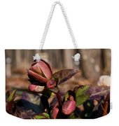Heliborus Early Flower Buds 2 Weekender Tote Bag