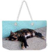 Hemingway Cat Weekender Tote Bag