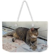 Hemingway Polydactyl Cat Weekender Tote Bag