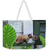 Hemmingway Cats Weekender Tote Bag