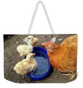 Hen With Her Yellow Chickens Weekender Tote Bag