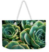 Hens And Chicks Weekender Tote Bag