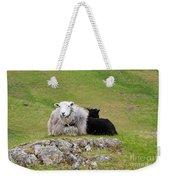 Herdwick Sheep On A Hillside In Cumbria Weekender Tote Bag