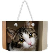 Here Kitty Kitty Weekender Tote Bag