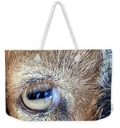 Here's Looking At You Kid - The Truth About Goats' Eyes Weekender Tote Bag